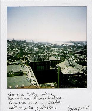 Genova polaroid