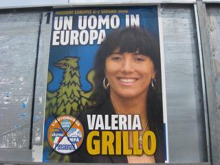 Manifesto elettorale elezioni europee
